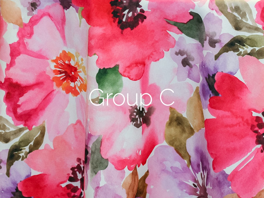 Print Group C_Cover